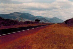 De weg naar Tsavo