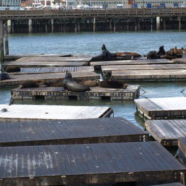 San Francisco – Maart 2010