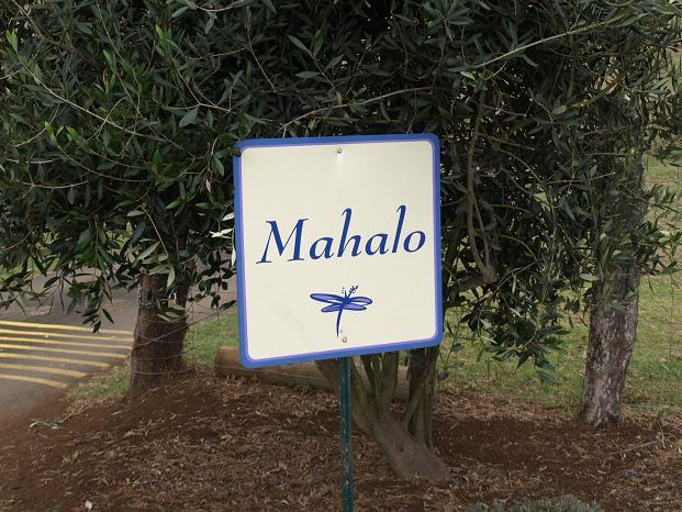 Mahalo: Dankjewel