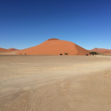 I've been through the desert…