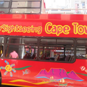 Cape of Good Hope, City Tour and return home