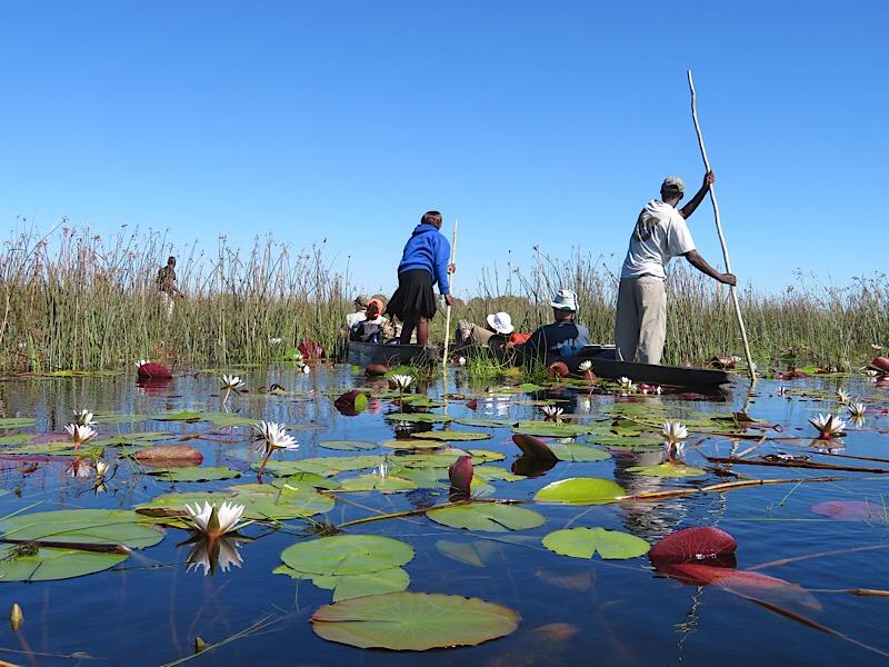 Mokuro in Okavango Delta