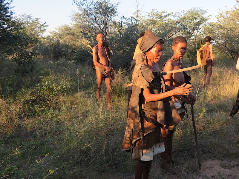 Bushmen in Botswana