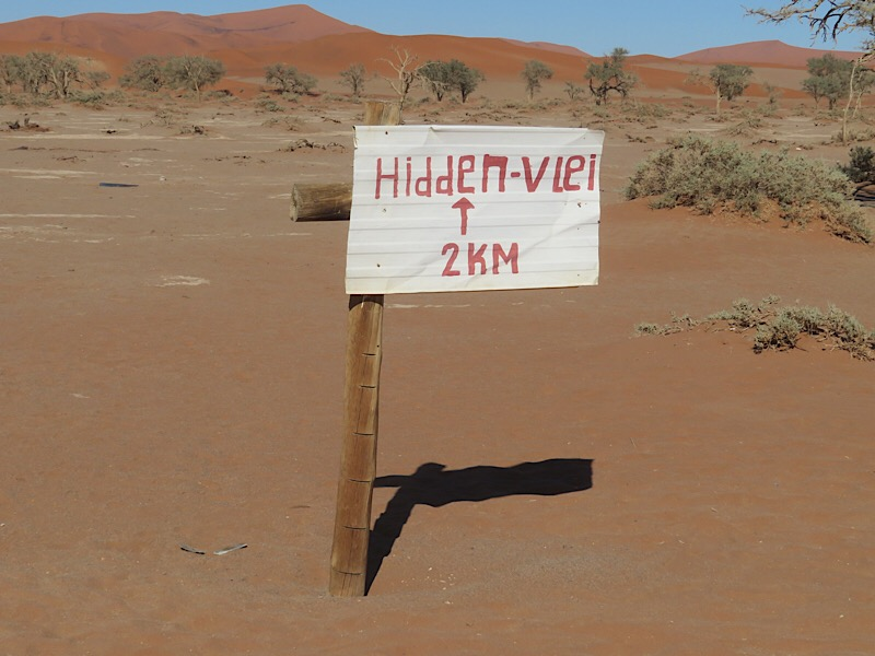 Africa: Hidden Vlei in Sossusvlei