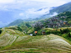 Longshen Rice Terraces